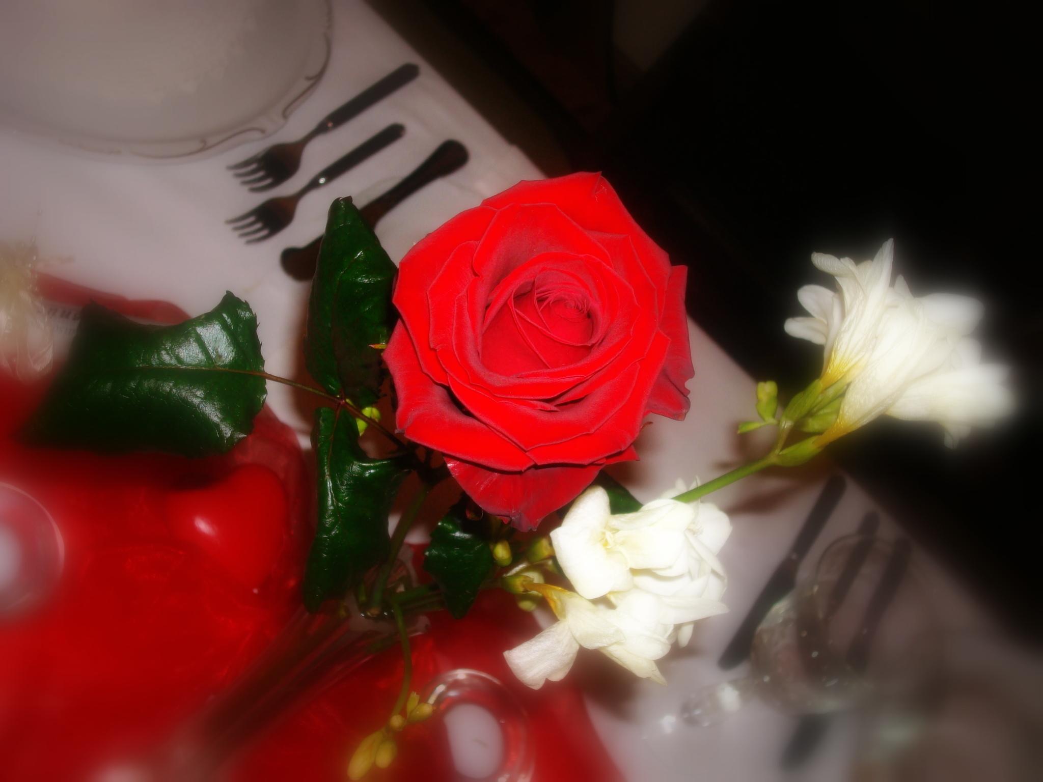 Unser Valentins-Menü Für Heute Abend…